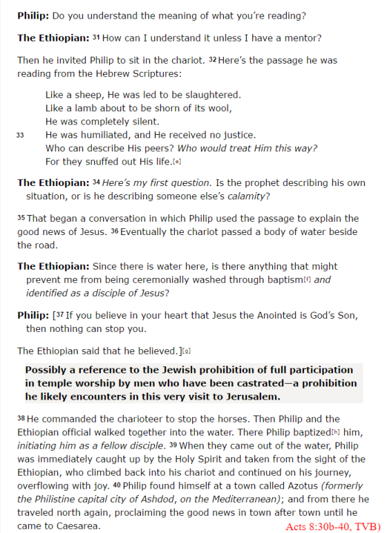 Acts 8 VOICE   Stephen's sermon weaves together the   Bible Gateway.png
